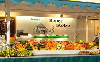Bauer Stolze